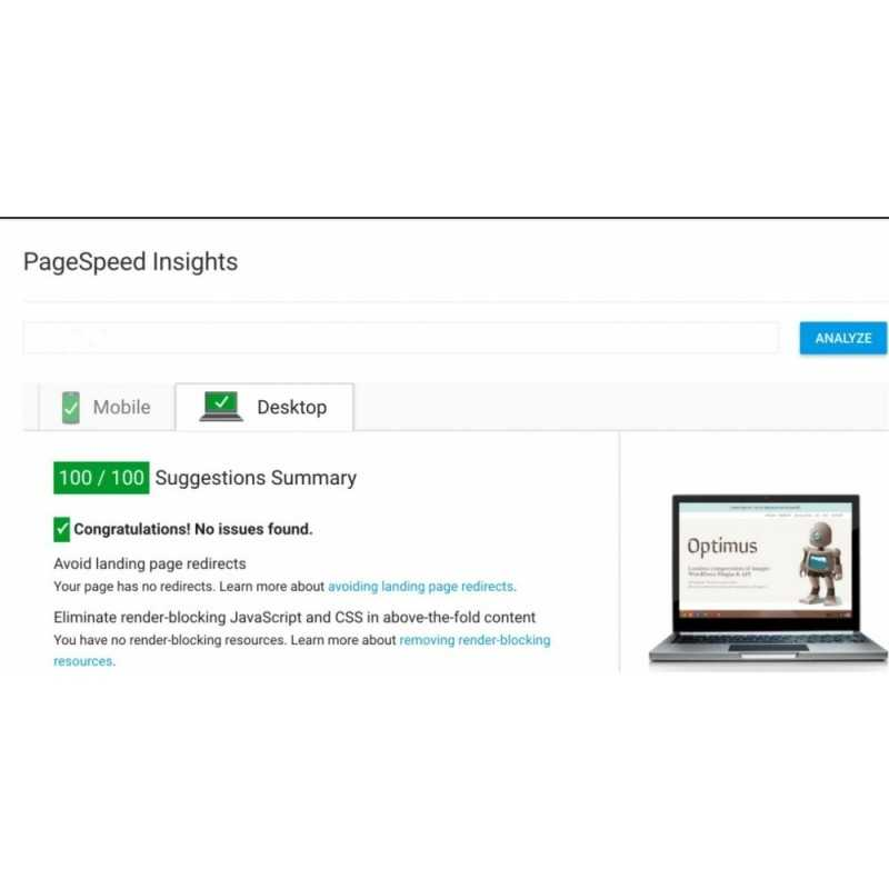 PageSpeed Insights Module PrestaShop